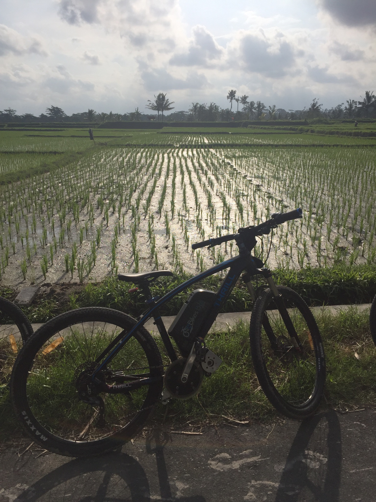 Bali Ebike Tour